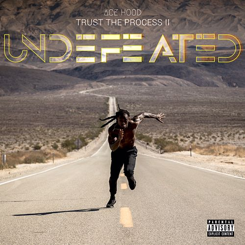 Undefeated by Ace Hood