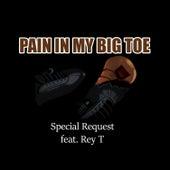 Pain in My Big Toe de Special Request