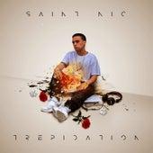 Trepidation von St. Nic