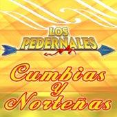 Cumbias y Norteñas by Los Pedernales