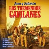 Pa' Que Son Pasiones by Los Tremendos Gavilanes
