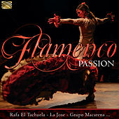 Flamenco Passion de Various Artists