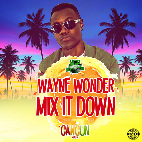 Mix It Down by Wayne Wonder