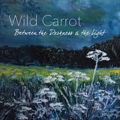 Between the Darkness & the Light von Wild Carrot