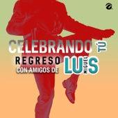 Celebrando Tu Regreso Con Amigos de Luis Miguel de Various Artists