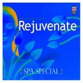 Spa Special - Music to  Help You Rejuvenate de Various Artists