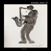 Kismet_tool_11 by Rui Da Silva