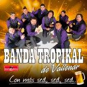 Con Más Sed, Sed, Sed by La Banda Tropikal de Vallenar