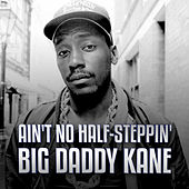 Ain't No Half-Steppin' by Big Daddy Kane