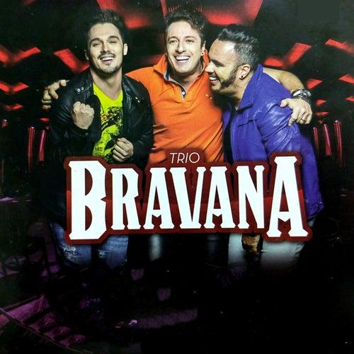 musica tres amigos do trio bravana para