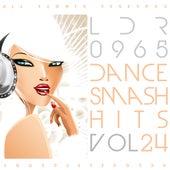Dance Smash Hits, Vol. 24 von Various Artists