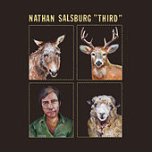 Impossible Air by Nathan Salsburg