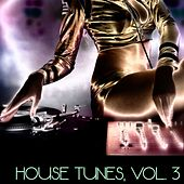 House Tunes, Vol. 3 (DJ Selection) di Various Artists