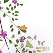 deepDeluxe - Season 0.5 von Various Artists