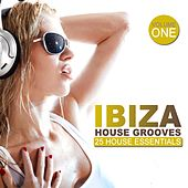 Ibiza House Grooves von Various Artists