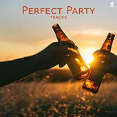 Perfect Party Tracks by Various Artists