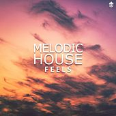 Melodic House Feels by Various Artists
