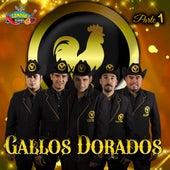 Parte 1 by Gallos Dorados