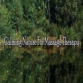 Calming Nature For Massage Therapy von Massage Therapy Music