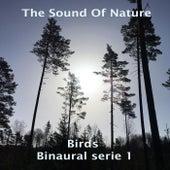 Birds - Binaural Serie 1 di The Sound of Nature