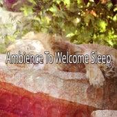 Ambience To Welcome Sleep by Deep Sleep Music Academy