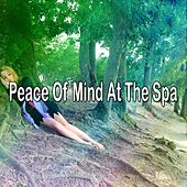 Peace Of Mind At The Spa by Best Relaxing SPA Music