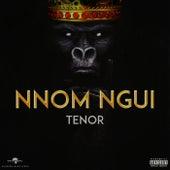 Nnom Ngui de Tenor (Reggae)