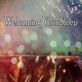 Welcoming Your Sleep de Ocean Sounds Collection (1)
