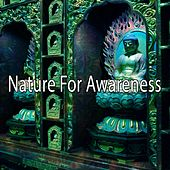 Nature For Awareness von Entspannungsmusik