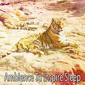 Ambience To Inspire Sleep de Water Sound Natural White Noise