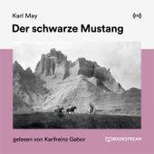 Der schwarze Mustang von Karl May