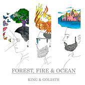 Forest, Fire & Ocean (Acoustic) von King