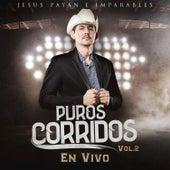Puros Corridos, Vol. 2 de Jesus Payan e Imparables