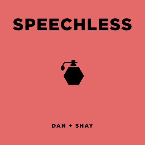 Speechless by Dan + Shay