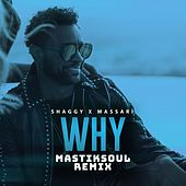 Why (Mastiksoul Remix) de Shaggy