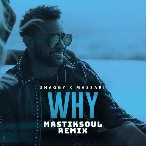 Why (Mastiksoul Remix) by Shaggy