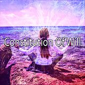 Constitution Of Will de Zen Meditation and Natural White Noise and New Age Deep Massage