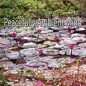 Peacefully Ambient Mind de Nature Sounds Artists