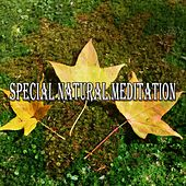 Special Natural Meditation von Lullabies for Deep Meditation