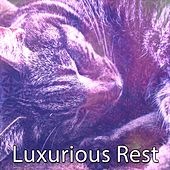 Luxurious Rest by Lullaby Land
