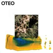 Colourful Heart von Oteo