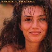 Con las Defensas Rotas von Ángela Molina