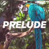 Prelude by Hoffey