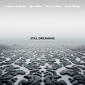 Still Dreaming (feat. Ron Miles, Scott Colley & Brian Blade) von Joshua Redman