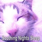 Soothing Nights Sleep de Smart Baby Lullaby