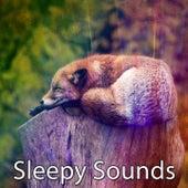 Sleepy Sounds by Deep Sleep Music Academy