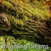Incoming Dreams by Baby Sleep Sleep
