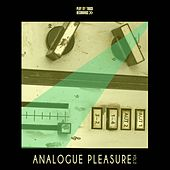 Analogue Pleasure, Vol. 2 de Various Artists