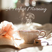 A Perfect Morning by Nature Sounds (1)