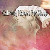 Calming Nature For Sleep de White Noise Babies